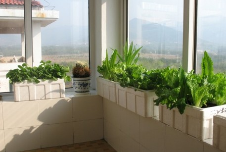 阳台菜园diy设计方案