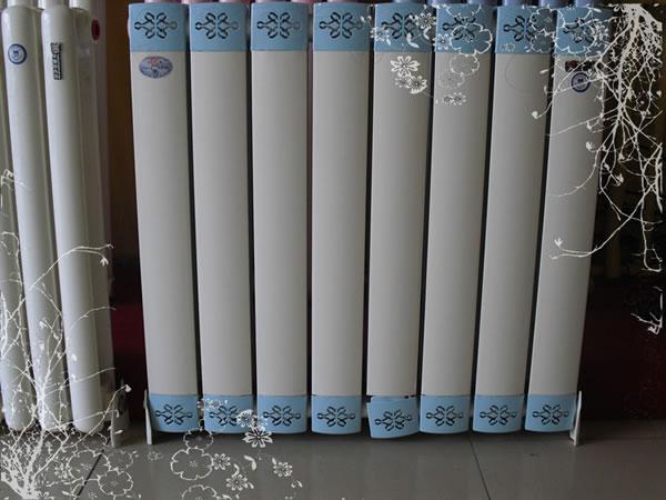 暖气片品牌有哪些 暖气片十大品牌排名        暖气片十大品牌二:森德