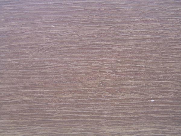 家庭装修中,地面装饰材料一般就是瓷砖和木地板。瓷砖耐磨易保养,木地板易褪色,难保养。木纹砖具有木纹的图案,逼真度高,而且具有瓷砖耐磨、不腐蚀的优点,是非常不错的选择。那木纹砖品牌有哪些呢?一起了解下木纹砖十大品牌。    木纹砖十大品牌排名:1、新中源陶瓷   被业界誉为建陶航母的新中源陶瓷在深入调研市场,全方位了解消费者的需求之后,凭借其强大的研发能力,再次主动出击推出新品臻木系列瓷质木地板。臻木是自然界的天然肌理与陶瓷技术的完美融合,是新中源继V7微晶石、臻冠绝色控之后新产品中的又一颗璀