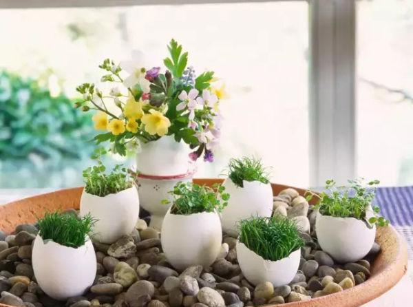 园艺的生活也有非常棒的创意,有时候我们还能在里面找到童年的趣味,接下来小编给大家介绍哪些充满 趣味的园艺盆栽,最主要的是制作难度都不大,不仅看着美,也可以自己手工家居DIY制作哦,赶紧一起去看看吧。   1、茶壶凤梨