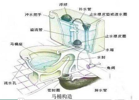 坐式马桶堵了怎么办 坐式马桶结构图