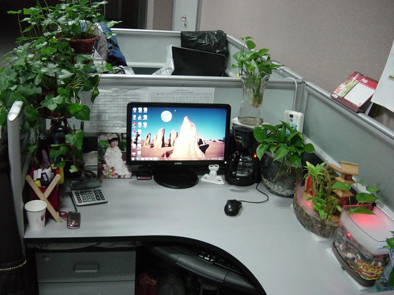 【首先是办公桌的摆放】图片