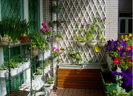 阳台如何装修设计绿化?阳台绿化设计方案