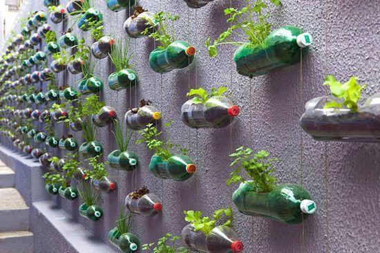 分分钟学会了?再来看看,塑料瓶创意升级版!