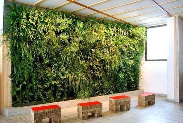 今天带来一个巧用办公室绿植墙装修的办公司设计,令人眼前一亮,倍感