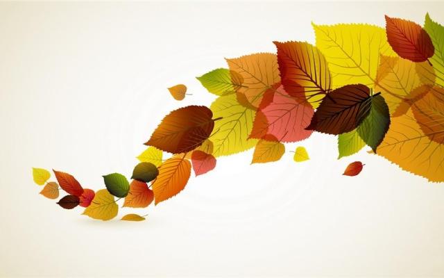家居diy:树叶粘贴画图片大全