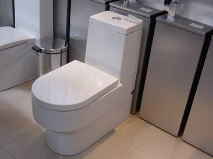 美标马桶安装—安装背水箱下水弯头
