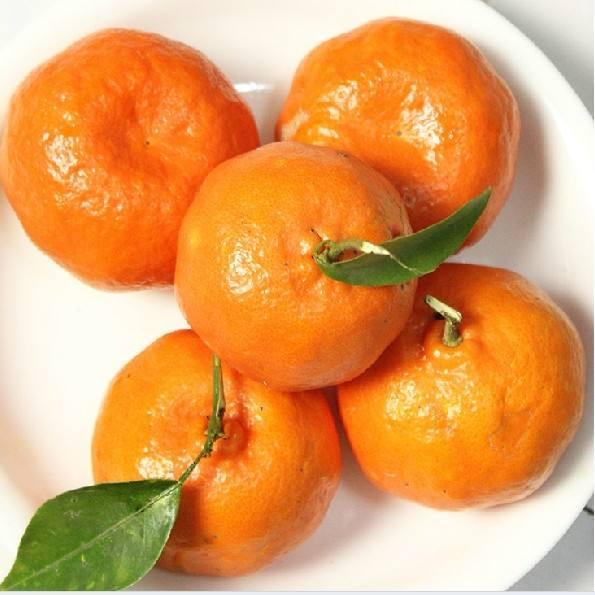 生活小常识:芦柑的功效 芦柑和橘子的区别