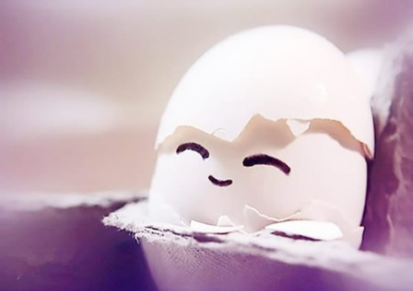 胖乎乎的鸡蛋熊猫,是不是很可爱?