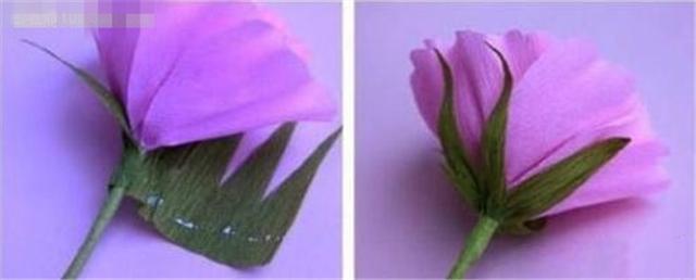 【图】皱纹纸花的折法 皱纹纸花的折法图解