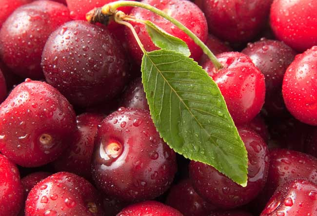 生活小常识:车厘子和樱桃的区别
