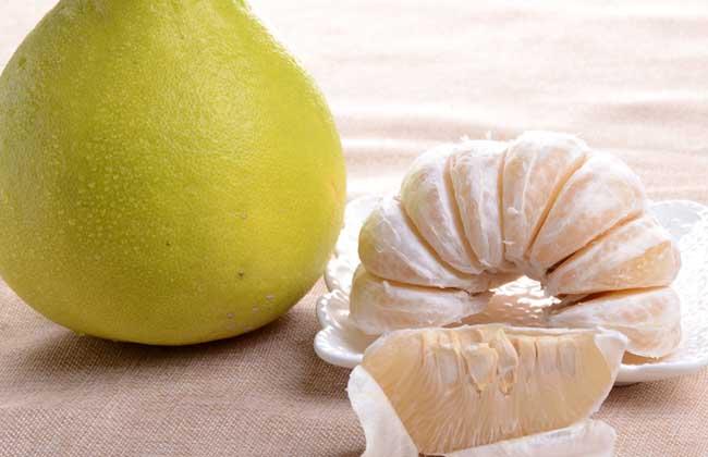生活小常识:沙田柚的功效与作用