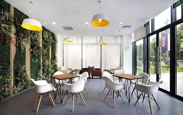 办公室装修设计技巧 办公空间的植物配置法
