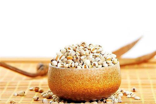 生活小常识:薏苡仁的功效 薏米怎么吃