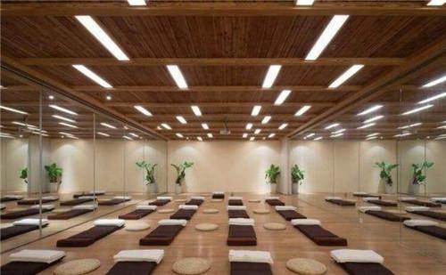 图中这款瑜伽馆装修适宜,木质的吊顶和木质的地面,高大的绿植摆放在墙图片