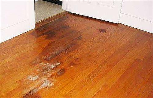 地板泡水起鼓怎么办 预防地板进水有什么方法