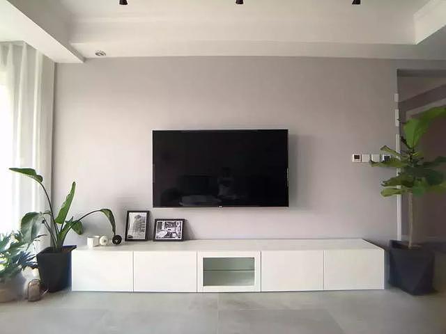 电视柜旁边放什么植物 这7种值得借鉴(附效果图)