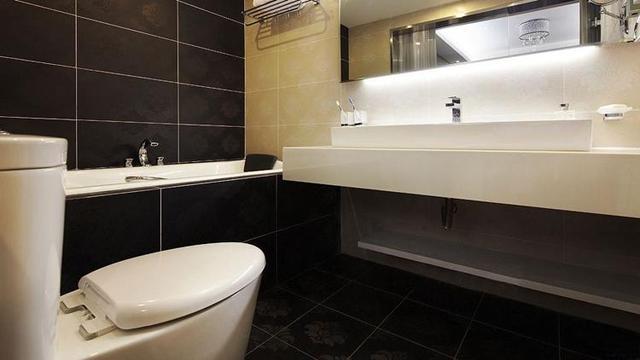 卫生间安装哪种清洁器好 现在很多人喜欢这样装