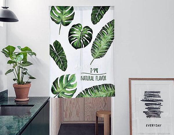 卫生间门口放什么植物好