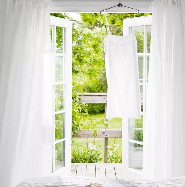 新房装饰设计把植物搬进家 是否真能采菊东篱下