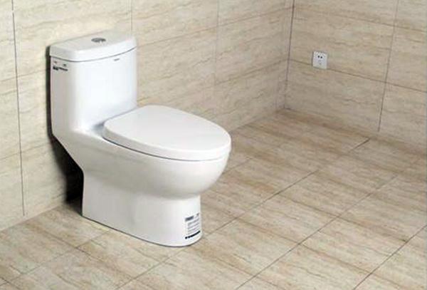 卫生间装马桶好还是蹲便好 装了蹲厕还能改马桶吗