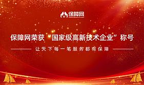 """保障网荣获""""国家级高新技术企业""""称号,2019扬帆启航"""