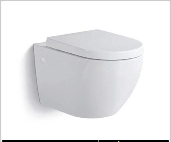 墙排式马桶有哪些优缺点 墙排式马桶多少钱