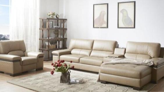 沙发买哪家的好 国内篇五千到五万之间都有!