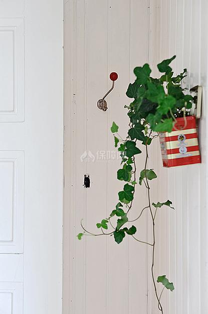 墙面的绿色植物郁郁葱葱,生机勃勃的生长着。