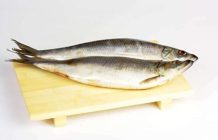 【图】青鱼怎么做好吃?青鱼和草鱼的区别
