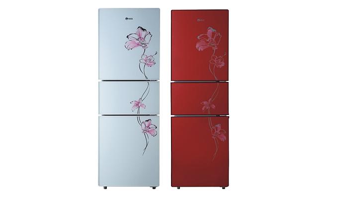 韩电冰箱质量怎么样 韩电冰箱价格是多少