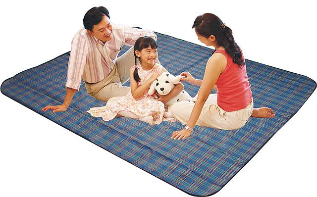 野餐垫价格是多少 哪里有卖野餐垫