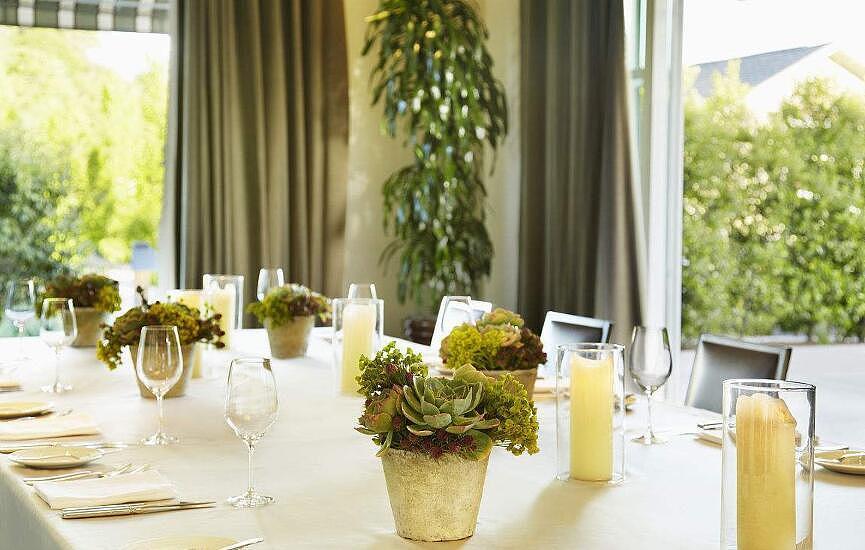 餐厅适合摆放的植物 餐厅植物摆放风水