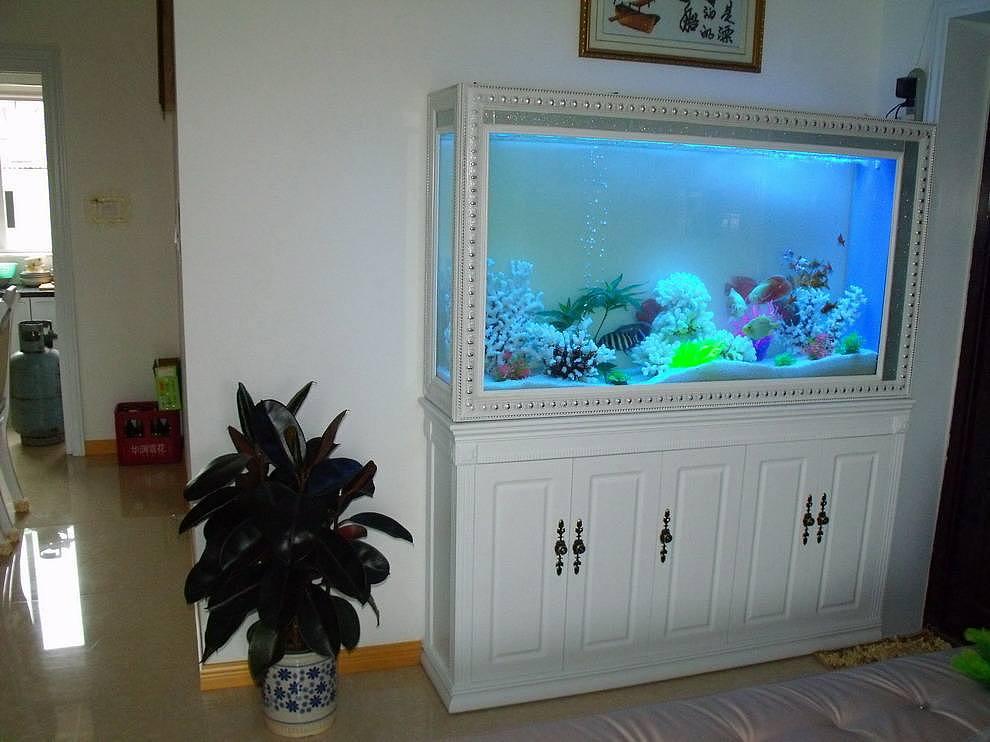 鱼缸放在客厅什么位置好 如何挑选客厅鱼缸