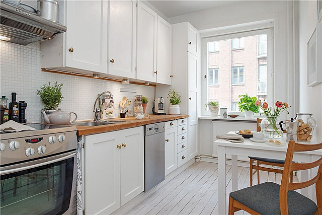 适合厨房养的植物有哪些 厨房植物风水禁忌