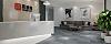 办公室装修,绿植在空间上的作用