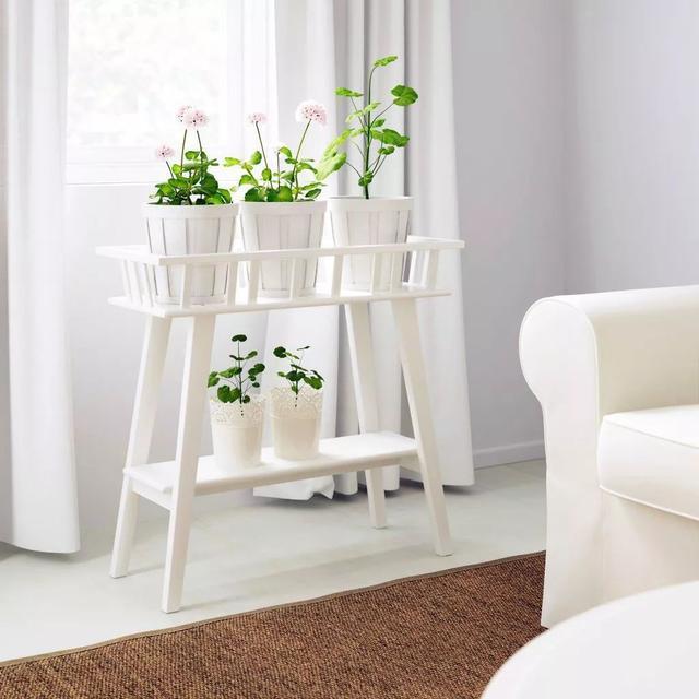 室内花架的款式选择 你更喜欢哪种类型?