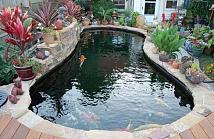 別墅魚池在什么位置好?風水安置很重要