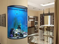 客廳擺放魚缸的風水禁忌 魚缸擺在哪里才能旺運?