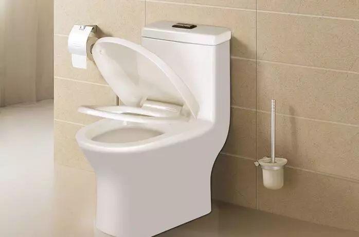 卫生间要选择蹲坑or马桶 如何选择才正确